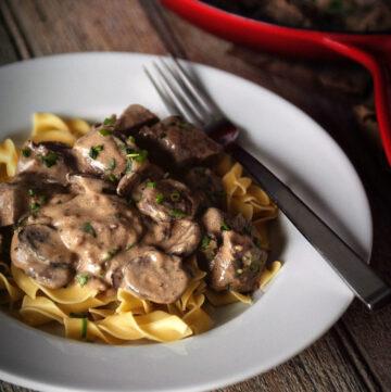Beef Stroganoff Recipe | Kita Roberts GirlCarnivore.com