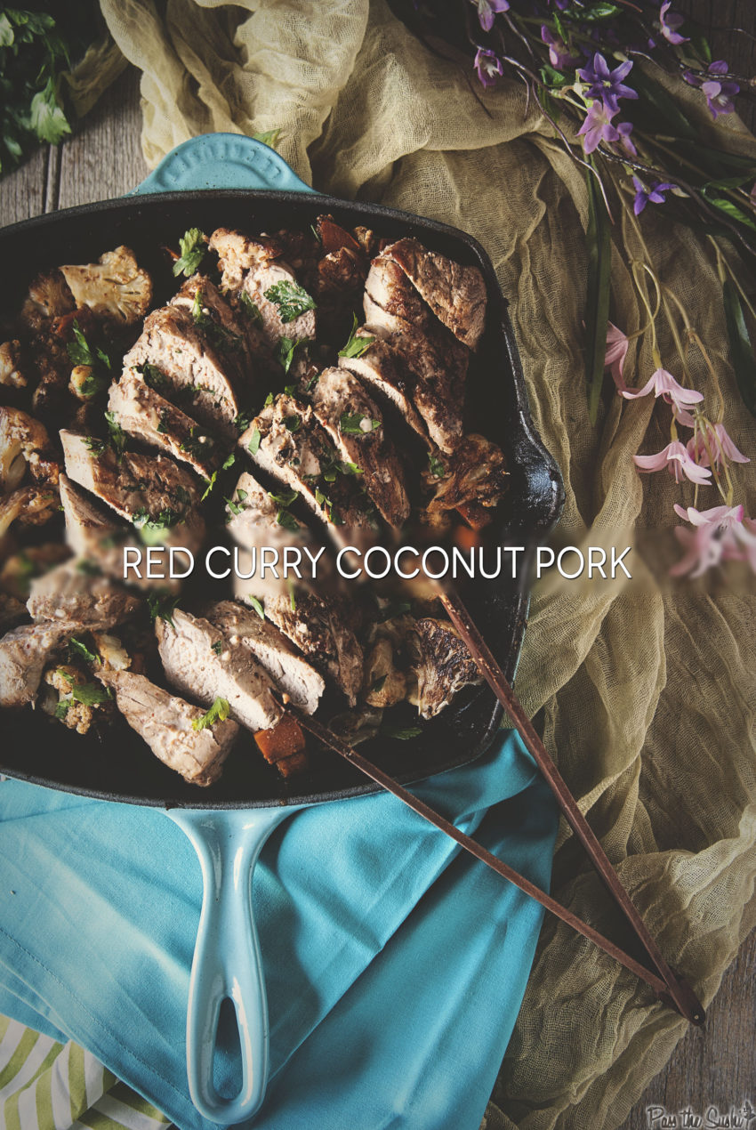 Red Curry Coconut Pork | Kita Roberts GirlCarnivore.com