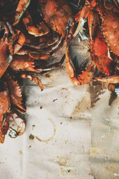 How to Steam Fresh Blue Crabs