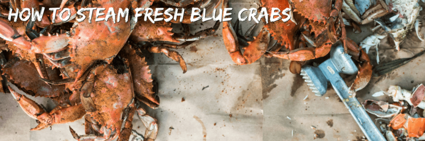The Ultimate Guide to Steaming Fresh Blue Crabs