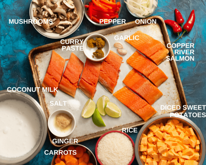 ingredients for salmon curry arranged to